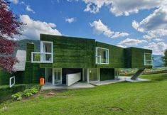 Synthetic Grass Covered Residence in Frohnleiten, Austria