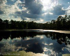 Photo Friday - See Mississippi - POW Lake - Saucier,, Mississippi - Tuxachanie National Recreation Trail - Pierced Wonderings - http://www.piercedwonderings.com