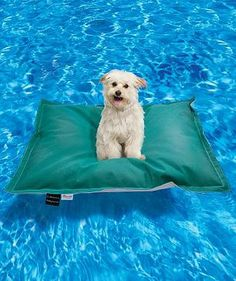 Invite your pampered pet to join in the pool party with our exclusive Pet Kai Pool Float.