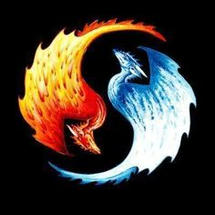 Fire Dragon and Ice Dragon Fire Dragon and Ice Dragon Ice Dragon Common Ice Dragon. Fire Dragon and Ice Dragon in Yin and Yang. Arte Yin Yang, Ying Y Yang, Yin Yang Art, Fire And Ice Dragons, Cool Dragons, Jing Und Jang Tattoos, Fire Dragon, Dragon Art, Ice Tattoo