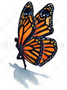 Try our most unique, fairy-butterfly 3D tattoo. The tiny fairy with butterfly wings on this watercolor tattoo appears to be coming to a landing on your skin. There is an extra surprise when you notice the skulls incorporated into the wing design. Available as either a black or a color tattoo. The butterfly tattoo represents faith and acceptance, or transformation. Wear as a shoulder or chest tattoo, a leg or arm tattoo, or anywhere you desire!