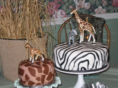 Wild animal birthday