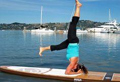 yoga sup sea trek Sausalito
