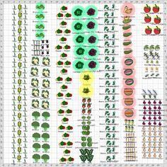 Garden Plan - 2015: veg