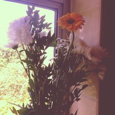 Cute flowers I received this summer :)