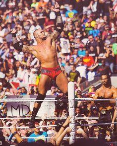 WWE Superstar Randy Orton at WrestleMania Wrestlemania 31, Wwe Total Divas, Wwe Pictures, Stone Cold Steve, Shawn Michaels, Wrestling Superstars, Nba Wallpapers, Randy Orton, Triple H