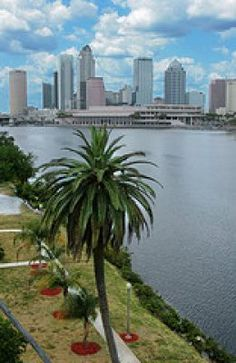 Top Ten Things to do in Tampa, FL truly a treasure on Florida's west central coastline.  https://www.facebook.com/westshoremarriottweddings