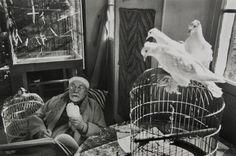 Retratos e auto retratos de Henri Matisse Autorretratos e a aparência de Matisse Veja também: Biografia, obra e curiosidades sobre Henri Matisse Auto-retratos realizados por Henri Matisse. Fotografias diversas de Matisse.