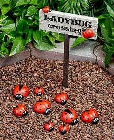 like the sign with collection of painted rocks Lakeside Garden, Live Plants, Light Decorations, Outdoor Lighting, Home Improvement, Pathway Lighting, Exterior Lighting, Home Improvement Projects, Home Improvements