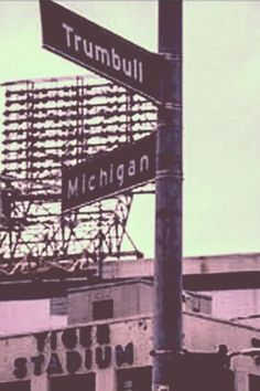 Detroit Tigers  #puremichigan