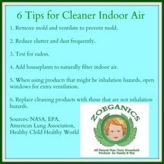 6 Tips for Cleaner Indoor Air Easy tips to clean up indoor air quality...one step at a time. #ZoeganicsClean
