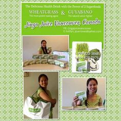 Jinga Juice is now available in Vancouver, Canada. For orders and dealership, contact Ludilyn at ludiyn_queriones@yahoo.com / 1-778-223-3848/ 1-904-628-7975 or visit her Facebook Page: www.facebook.com/jingajuicevancouver Powers Of 2, Cancer Fighter, Superfoods, Vancouver, Juice, Canada, Facebook, Health, Green