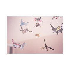 FFFFOUND! | sophie takes pictures: paper bird ❤ liked on Polyvore featuring pictures, backgrounds, photos, pink and pics