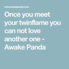 Once you meet your twinflame you can not love another one - Awake Panda