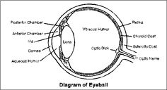 eye diagram label