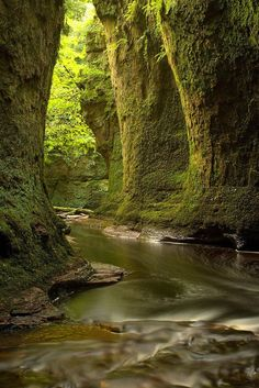 Also known as the Devil's Pulpit, Finnich Glen is about 30 minutes away from Glasgow. According to local lore, the gorge used to be used by druids as a secret meeting place.