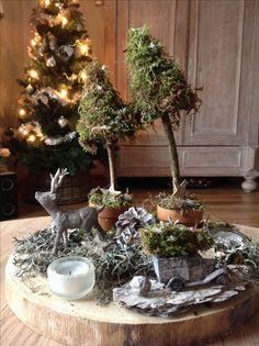 De kerstboom uit het bos gehaald.  :-)
