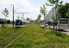 Glattalbahn - green line