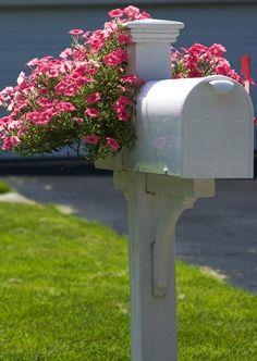flowers on mailbox by steve_latimer, via Flickr
