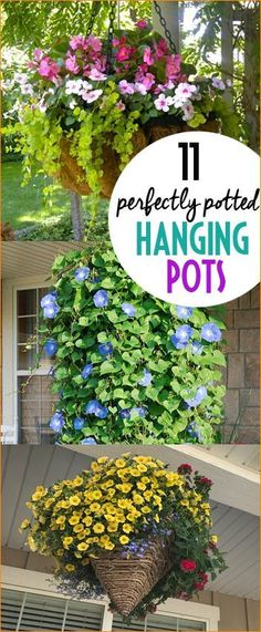 11 Perfectly Potted Hanging Pots.  Perfectly pot your hanging pots with these tips, tricks and suggestions.  Curb appeal pots for your porch and patio.  Stunning outdoor pots that will beautify your landscape.