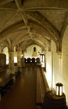 Henry VIII's wine cellar, photograph by Nicola Twilley.