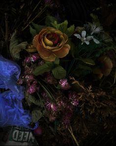 Cemetary bins - Al Brydon Still Life Photography, Fine Art Photography, Contemporary, Artistic Photography, Art Photography