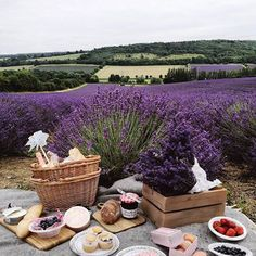 The perfect spot for a Sunday picnic, don't you think? Photo: @mylondonfairytales