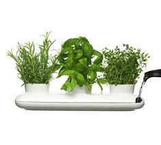Sagaform Herb Pot Trio