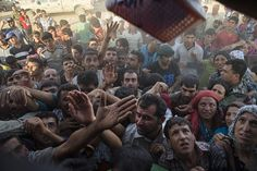 """In early September, an unnamed ISIS operative confirmed that an estimated covert ISIS terrorists had arrived in Europe disguised as refugees. """"Among the refugees, who went to Europe, ma… Muslim Immigration, Syrian Refugees, Forced Migration, Ban Islam, Eu Countries, Refugee Crisis, Human Trafficking, Decir No, Told You So"""