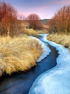 Amazing photography by Elizabeth Carmel - this is a beautiful shot of a Sierra stream