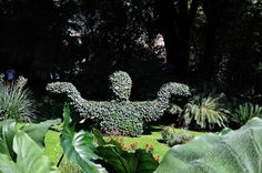 Heller Garden - Giardino Botanico Hruska, Gardone Riviera - Hruska Botanical Garden