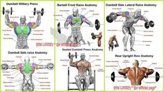 Build-muscle-Gym: Shoulder Workouts For Men : The 2 Best Routines For Bigger Delts Guaranteed Shoulder Workouts For Men, Best Shoulder Workout, Shoulder Training, Shoulder Exercises, Mens Fitness, Fitness Tips, Fitness Motivation, Lifting Motivation, Fitness Facts