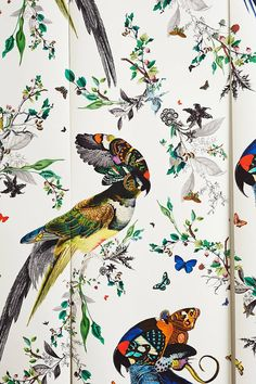 Kristjana S Lear Gaukur Mural in Multi Size: One Size Wall Decor from Anthropologie. Saved to House. Unique Wallpaper, Home Wallpaper, Fabric Wallpaper, Parrot Wallpaper, Tropical Wallpaper, Art And Illustration, Illustrations Posters, Web Design, Design Art