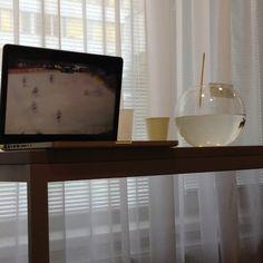 Hockey & Fish ;)