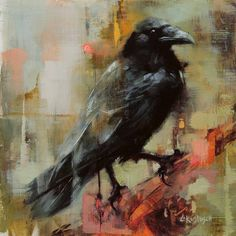 Lindsey Kustusch: I am an oil painter based out of the San Francisco. Raven Pictures, Bird Pictures, Crow Art, Raven Art, Rabe Tattoo, Crow Painting, Trash Polka, Crows Ravens, Bird Artwork