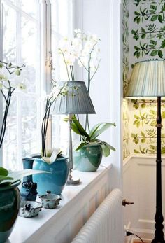 Come rendere stilosi i davanzali interni delle finestre - Lampada e piante decorative