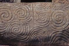 Espirales fosilizadas