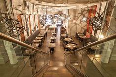 Tribeca Canvas restaurant in New York, by Chef Morimoto