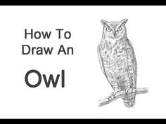 Exciting Learn To Draw Animals Ideas. Exquisite Learn To Draw Animals Ideas. Flower Drawing Tutorials, Art Tutorials, Flower Drawings, Bird Drawings, Drawing Techniques, Drawing Tips, Sketching Tips, Drawing Ideas, Pencil Tattoo