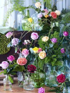 Rosen sind in verschiedenen Farben erhältlich: in Rot, Weiß, Gelb, Rosa, Violett, Orange und Grün.   #rose #roses #rosen #blumen #flowers #deko