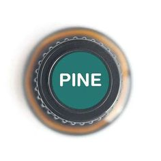 Our pine essential oil is used in steam rooms and baths to revive tired muscles and promote clear breathing. Lemon Eucalyptus Essential Oil, Types Of Eucalyptus, Pine Essential Oil, Basil Essential Oil, Lemongrass Essential Oil, Sleeping Essential Oil Blends, Essential Oils For Sleep, Organic Essential Oils, Pure Essential