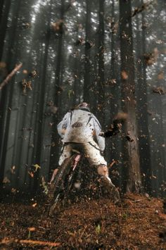 ♂ Outdoor Sport Mountain Bike in the forest…