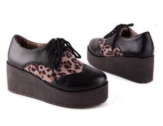 Leopard oxford creepers
