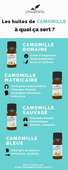 Bien différencier les huiles essentielles de Camomille cela peut être utile au quotidien ! Découvrez leurs différents utilisations et posologies et bien plus encore #huilesessentielles #camomille  La Compagnie des Sens  Pictogrammes : www.thenounproject.com
