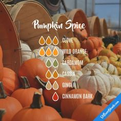 Pumpkin Spice Essential Oils Diffuser Blend ••• Buy dōTERRA essential oils online at www.mydoterra.com/suzysholar, or contact me suzy.sholar@gmail.com for more info.
