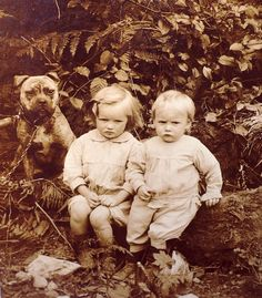 Antique photo postcard 2 mad children Best Friend Old English Bulldog Bully dog. Early 1900s. Pinned by Judi Crowe.