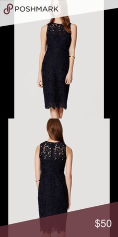 HP plus size Ann Taylor Loft lace dress . HP everything plus sizeAnn Taylor Loft lace sheath dress . Color Fresh Navy. NWT. No reasonable offer will be refused. Ann Taylor Dresses