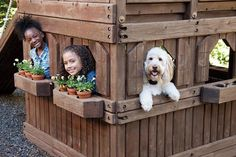 Petsafe Yardmax Pig00 11115 Review - Rechargeable Inground Fence kids