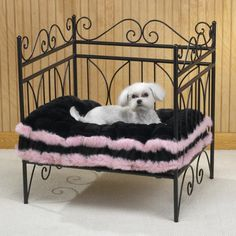 . dog beds are available online especially for your wonderful large dog600 x 600 | 71KB | howtobecomeadogtrainer.net
