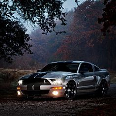 Ford Mustang Shelby GT500...Brought to you by #House of #Insurance in #EugeneOregon
